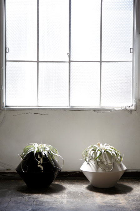 in3_window